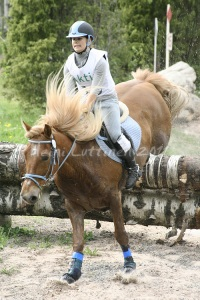 Why wouldn't a finnhorse be good for riding?