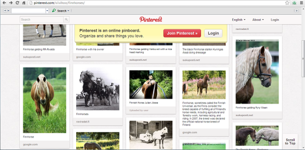 finnhorse board on pinterest