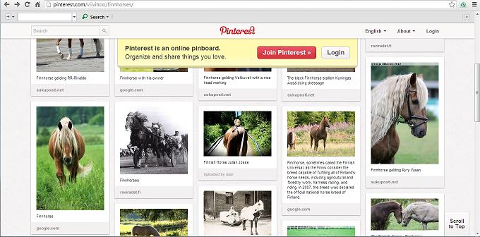 finnhorse board on pinterest