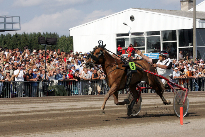 How to bet on Finnish horse races (2/2)