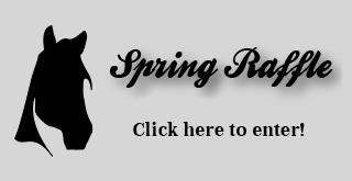 Spring Raffle - Poster Set Giveaway! (2/2)