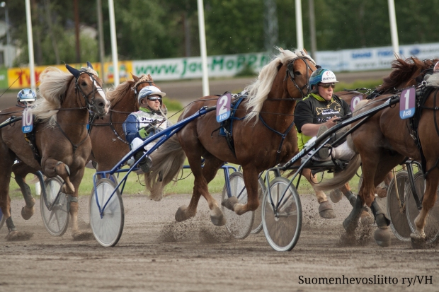 New international coldblood horse race in Romme
