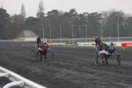 Finnhorses in Vincennes