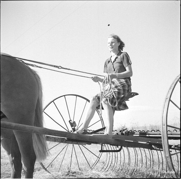 Nainen haravakonetta ajamassa