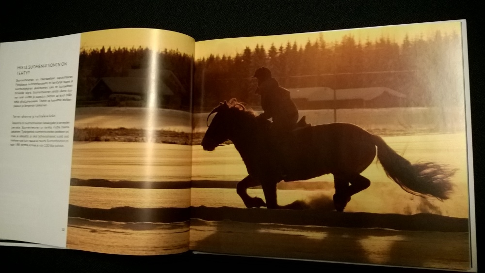 The Finnhorse - Our National Treasure book is available in English (5/6)