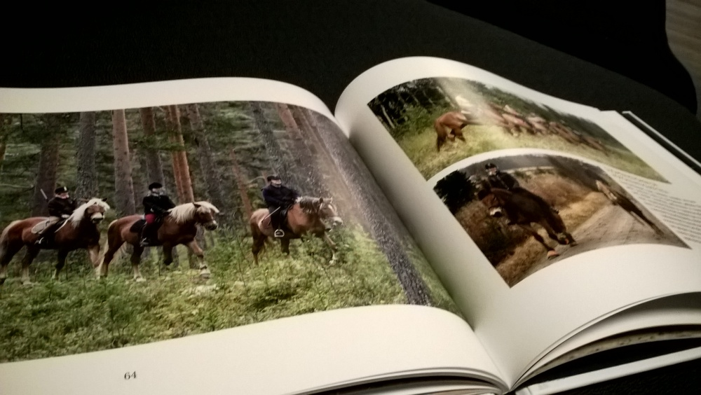 The Finnhorse - Our National Treasure book is available in English (4/6)